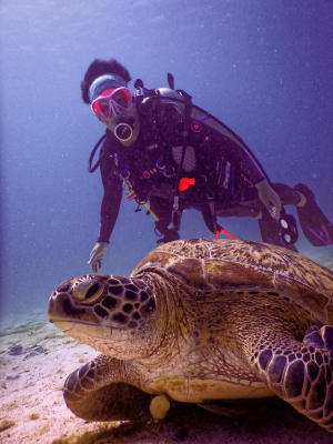 Diver under water swimming past turtle